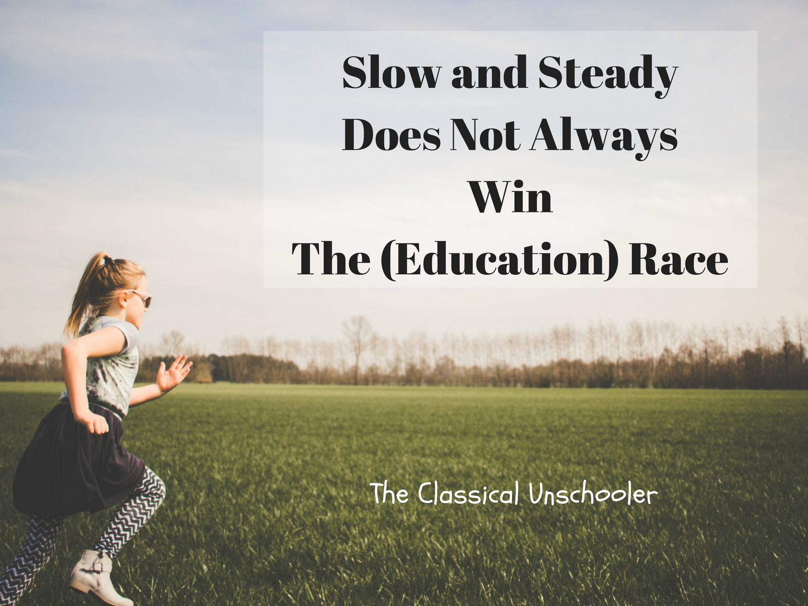slow and steady wins the race essay Legal procedures for donating organs essay steady and essay slow wins the race - insurgencies: essays in planning theory (rtpi library series) - by john friedmann - routledge.